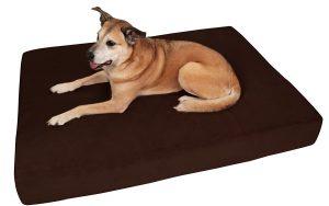 5. Big Baker Orthopedic Dog Bed