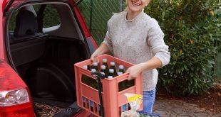 YSC Wagon Garden Folding Utility Shopping Cart, Beach Red