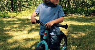 Schwinn 12-Inch Balance Bike