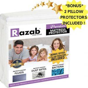 RAZAB HomeGoods Queen Hypoallergenic