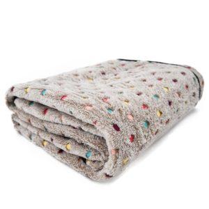 PAWZ Road Dog Blanket