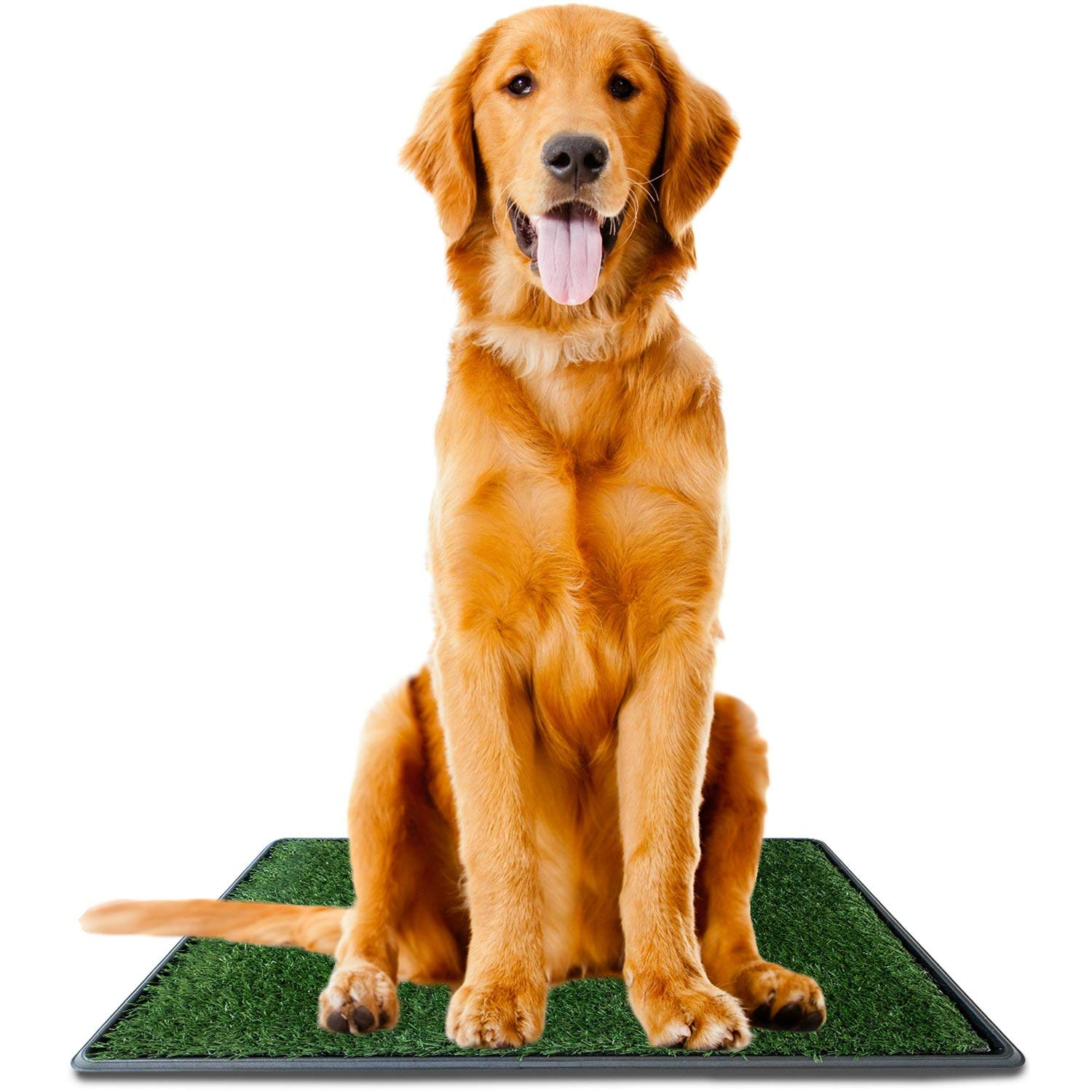 Ideas In Life Dog Potty Grass Pad