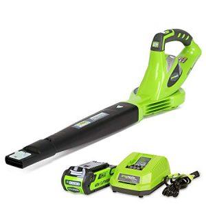 Greenworks 40V Cordless Echo Leaf Blower