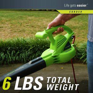 Greenworks Electric Echo Leaf Blower