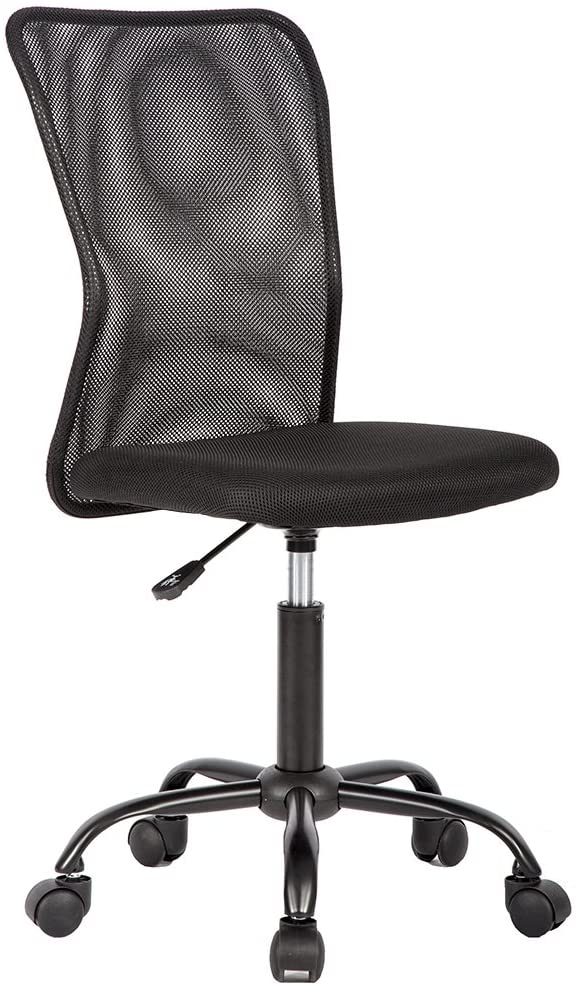 Mesh Computer Chair with Back Support