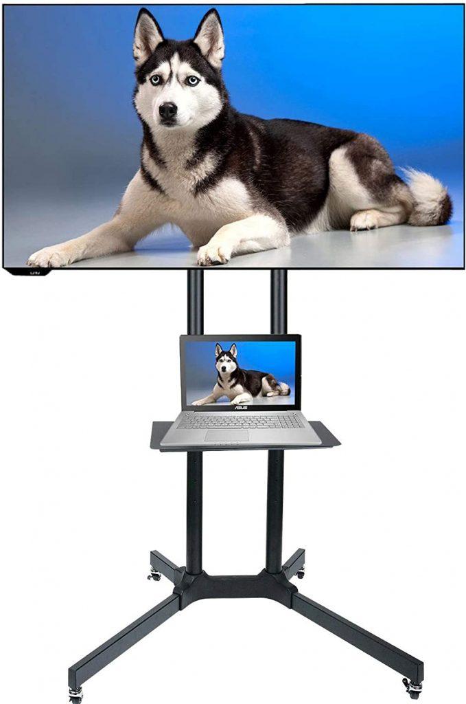 Husky Mount Mobile TV Stand