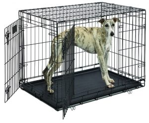 3. MidWest Life Stages Folding Dog Crate
