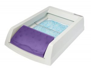 5. ScoopFree Self-Cleaning Litter Box