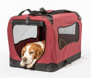8. 2PET Foldable Dog Crate