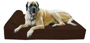 1. Big Baker Top Orthopedic Dog Bed