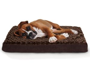2. Furhaven Deluxe Orthopedic Mattress Pet Dog