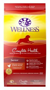 2. Wellness Complete Health Dry Senior Dog Food
