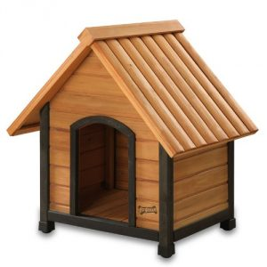 3. Art Frame Dog House with Dark Frame