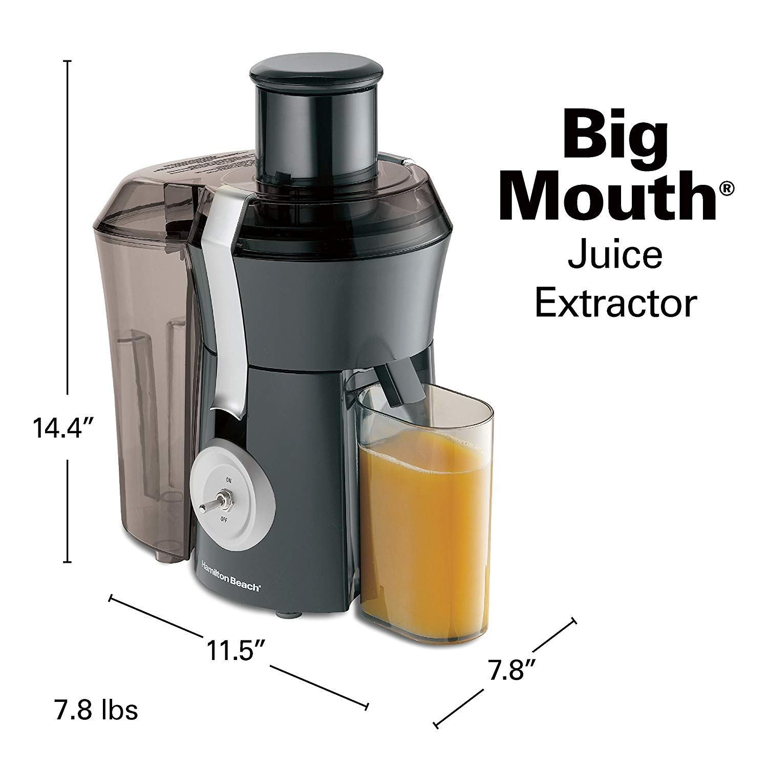 Hamilton Beach Masticating Juicer