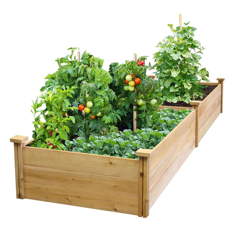 Best Value Cedar Raised Garden Bed