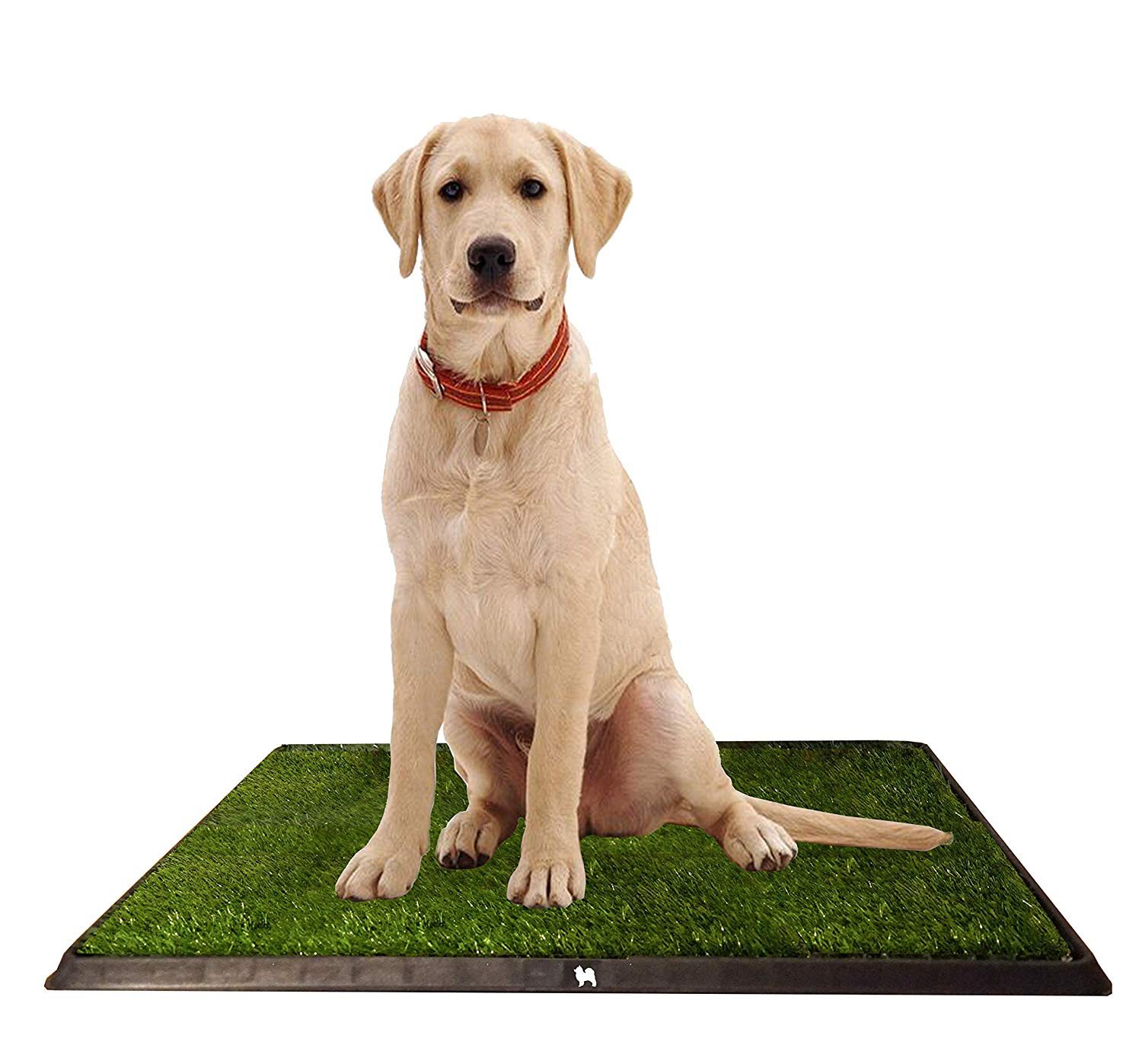 PuppyPro Potty Grass Toiler Trainer Tray