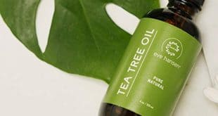 Top 10 Best Tea Tree Oils in 2019 Reviews