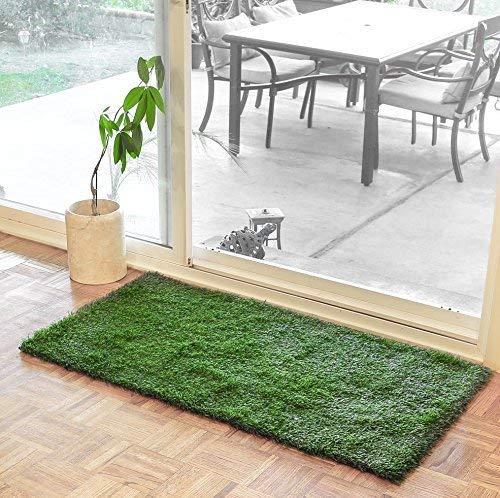 Large Grass Door Mat Rug