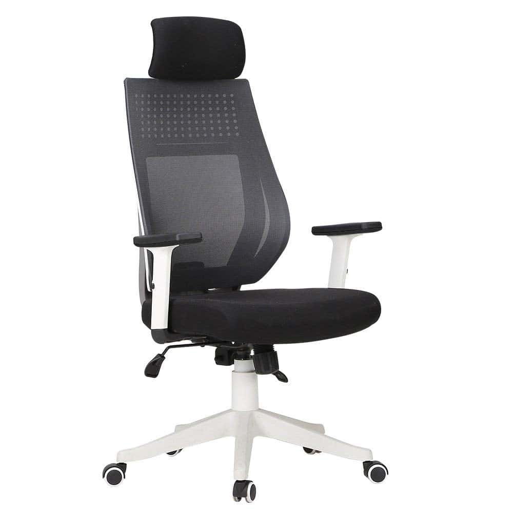Hbada Ergonomic Office Chair
