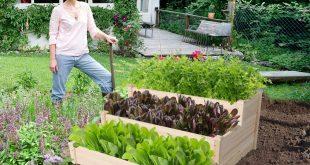 Top 10 Best Raised Bed Gardens in 2020 Reviews
