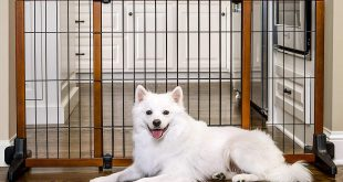 Carlson Freestanding Large Pet Gate